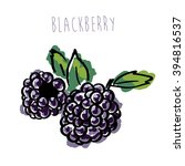 blackberries on white background | Shutterstock .eps vector #394816537