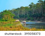 wild landscape with asian... | Shutterstock . vector #395058373