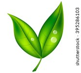green leaf with water drops ... | Shutterstock .eps vector #395286103