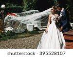 handsome groom   beautiful... | Shutterstock . vector #395528107