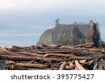 Driftwood Logs Covering A Beac...