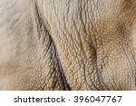 White Rhino Skin