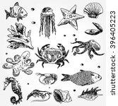 some sea animals hand drawn | Shutterstock .eps vector #396405223