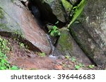 Small Waterfall In The Forest...