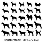 Stock vector vector dog breeds silhouettes collection isolated on white dog icons collection for cynology pet 396672163