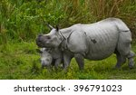 the female great one horned... | Shutterstock . vector #396791023