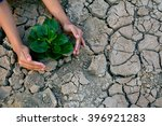 hand holding green plant on dry ...   Shutterstock . vector #396921283