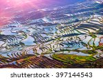 terraced rice fields scenery in ... | Shutterstock . vector #397144543