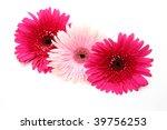 fine flowers | Shutterstock . vector #39756253