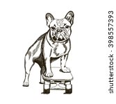 bulldog on a skateboard. hand... | Shutterstock .eps vector #398557393