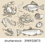 hand drawn sketch set seafood.... | Shutterstock .eps vector #398920873