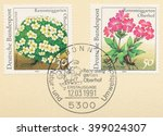 Small photo of ST. PETERSBURG, RUSSIA - MAR 30, 2016: A first day of issue postmark printed in Bonn, Germany, shows Schweizer mannschild (Androsace helvetica) and Wulfens primel (Primula wulfeniana), circa 1991