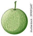 fresh melon on white background ... | Shutterstock .eps vector #399091687