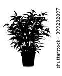 tree  flower benjamin   ficus... | Shutterstock .eps vector #399232897
