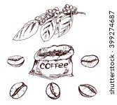 hand drawn coffee beans  sketch ... | Shutterstock .eps vector #399274687