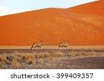 Oryx Near Amazing Dunes In The...