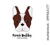 french bulldog design   vector... | Shutterstock .eps vector #399562177