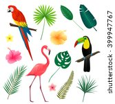 vector illustration of tropical ... | Shutterstock .eps vector #399947767