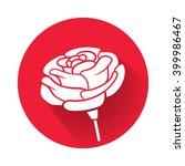 a rose flower | Shutterstock .eps vector #399986467