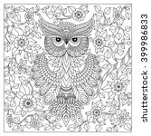 coloring book for adult and... | Shutterstock .eps vector #399986833