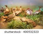 bucharest  romania   august 3 ...   Shutterstock . vector #400532323