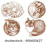 Set Off Cats   Hand Drawn...