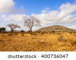 african savannah. kenya.... | Shutterstock . vector #400736047