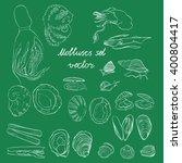 molluscs set vector... | Shutterstock .eps vector #400804417