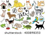 Pets Illustration Set   Hand...