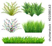 Grass And Wild Plants Vector...