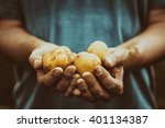 organic vegetables. farmers... | Shutterstock . vector #401134387