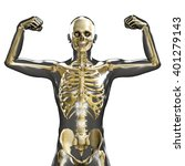 3d medical male skeleton with... | Shutterstock . vector #401279143