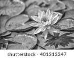 black and white picture of... | Shutterstock . vector #401313247
