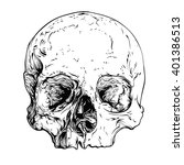 skull realistic sketch. vector... | Shutterstock .eps vector #401386513