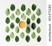 coffee or tea on green leaves... | Shutterstock . vector #401473183