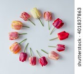 Stock photo creative arrangement of tulip flowers on bright background flat lay 401837863