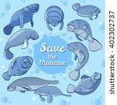 manatees swimming in the ocean. ... | Shutterstock .eps vector #402302737