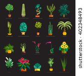 Garden Plants.potted Flowers I...