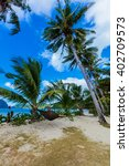 girl in hummock on tropical...   Shutterstock . vector #402709573