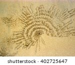Small photo of Sand bubbler crabs draw on the sand, Thailand. Scopimera and Dotilla genera belong to the Dotillidae family. They live in the tropical Indo-Pacific area.