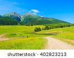 Road In Green Valley In Summer...