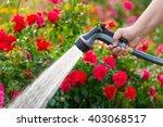 watering garden flowers with... | Shutterstock . vector #403068517