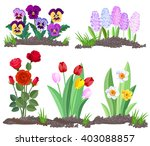 set of flowers growing in the... | Shutterstock .eps vector #403088857
