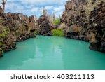 beautiful landmark las grietas... | Shutterstock . vector #403211113