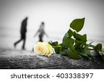 Rose Lying On Broken Tree On...