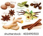 different aromatic spices set...   Shutterstock .eps vector #403490503