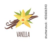 vanilla vector logo  in flat...