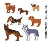 vector illustration of dog... | Shutterstock .eps vector #403607737