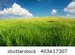 Green Field In The Mountain...