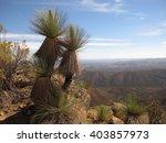 Flinders Ranges  South...